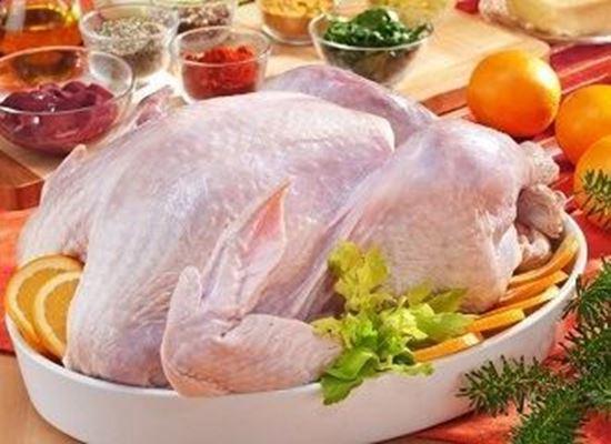 لحم الديك الرومي يعالج اضطرابات المعدة