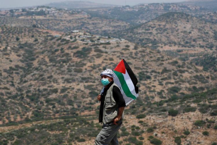 شهادة نورمان فنكلستين في العدوان الصهيوني على غزة