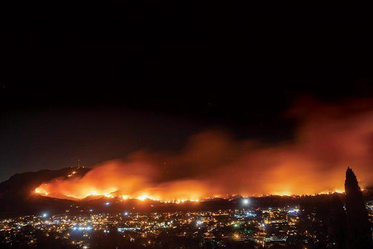 تعويضات الدولة أهم سبب في حرائق الغابات