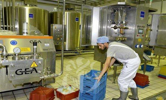 فرع الحليب: إجراءات لتجاوز الصعوبات
