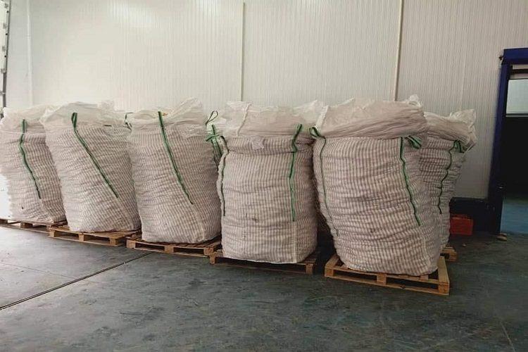 هذه كمية البطاطا التي ستُصدر من الوادي نحو إسبانيا