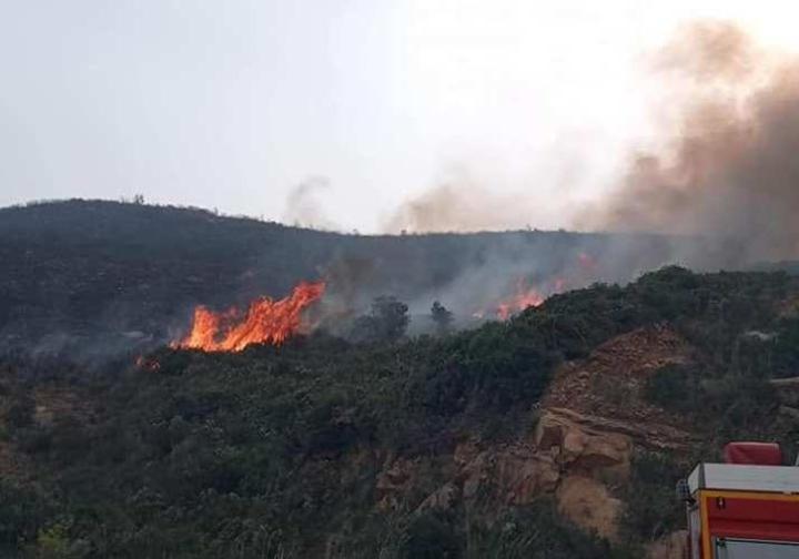 بالصور.. ولاية بجاية تسجل 24 حريقا متزامنا