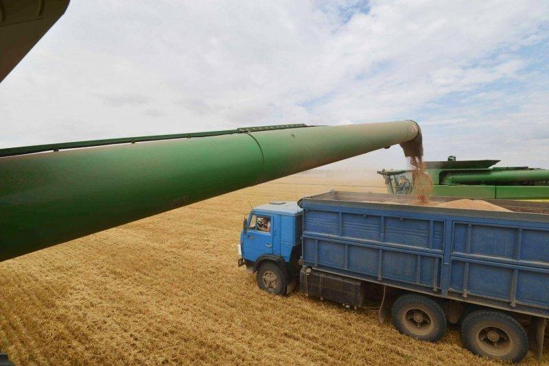 بعد إعادة شحنة فرنسية فاسدة.. روسيا تعلن رفع حجم صادرات القمح نحو الجزائر