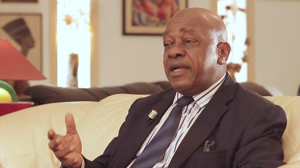 Survie Cameroun : Penda Ekoka étale les suffisances du rapport présenté par Kamto