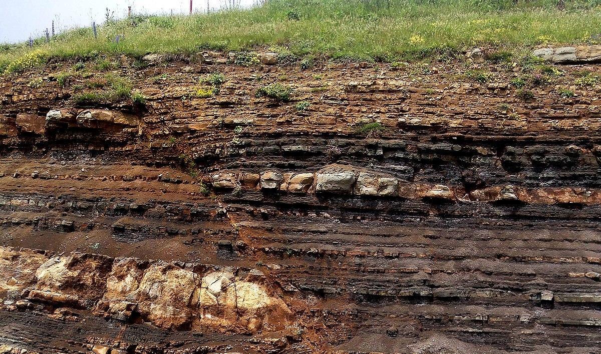 Comment retrace-t-on l'histoire tectonique grâce aux sédiments ?