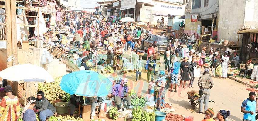 'En 1976, le Cameroun comptait 7 600 000 habitants'