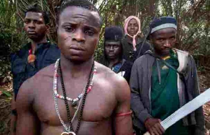 Révélations sur les 93 milliards de financement du terrorisme au Cameroun
