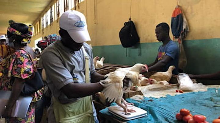 Crise et flambée des prix des produits de première nécessité en Centrafrique
