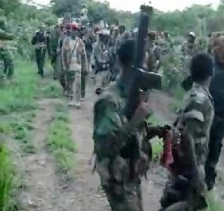 RCA: arrivée massive des rebelles de l'UPC à Zémio, incendie des maisons au centre-ville