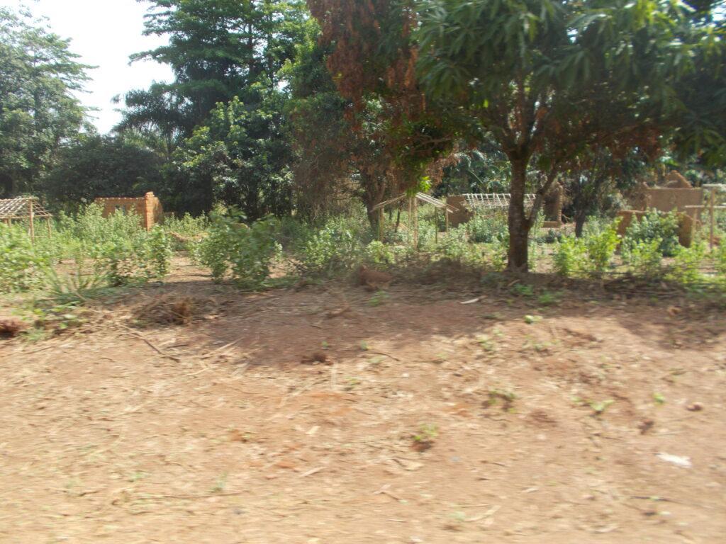 RCA: un chasseur abattu par des éleveurs peuls dans la localité de Yaloké