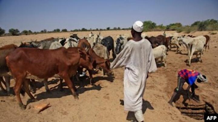 Au moins 36 morts dans des affrontements tribaux au Darfour
