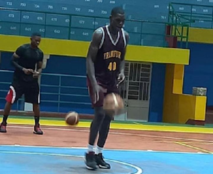 Les Fauves se préparent pour l'Afro basket