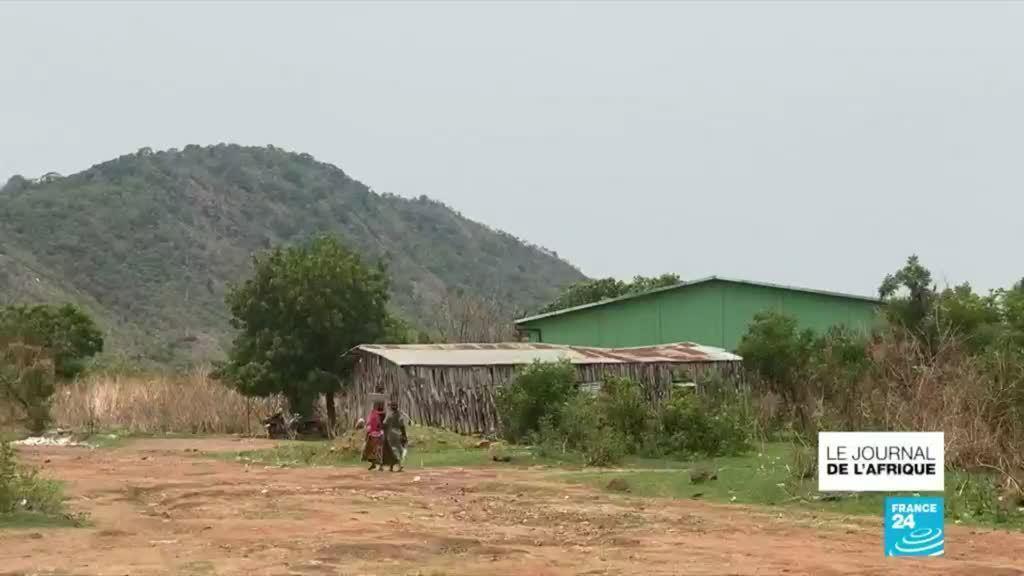 Au Bénin, le boom du coton ne profite pas à tout le monde