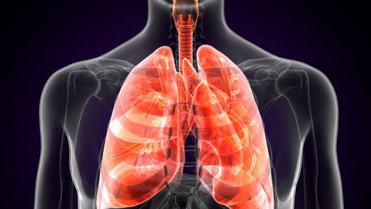 Ituri : 90 cas suspects de peste pulmonaire, dont 12 morts en 2021