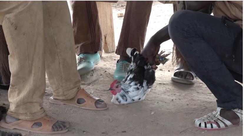 Côte-d'Ivoire: KKB à Guézon, vers la fin de l'impunité pour les dozos assassins ?