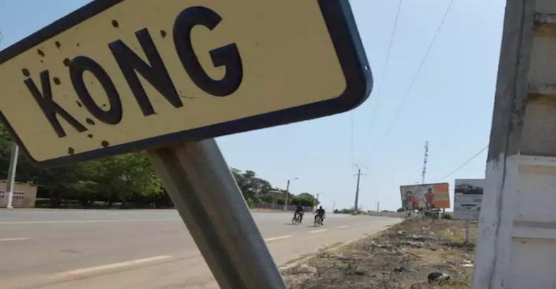 Côte-d'Ivoire: Comment expliquer les 3 sièges de députés de Kong contre 1 à Adiaké, à égalité avec Man ?