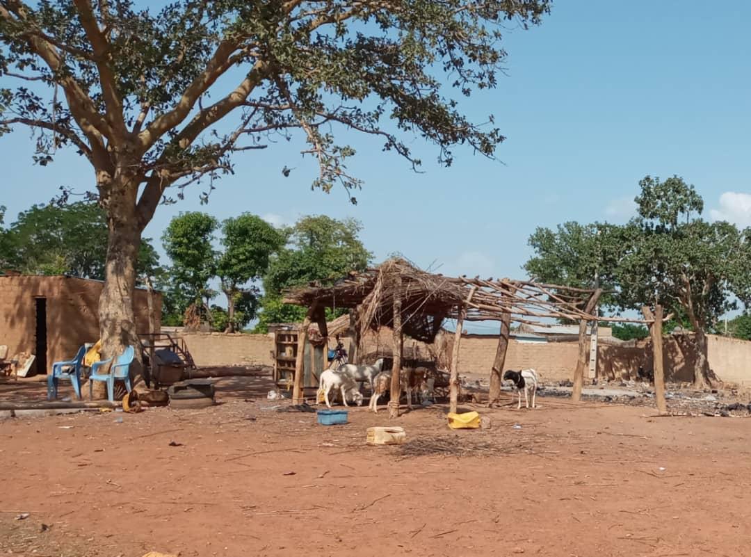 Reportage / Côte d'Ivoire-Burkina – Frontière «pseudo» fermée, juteux business pour les passeurs