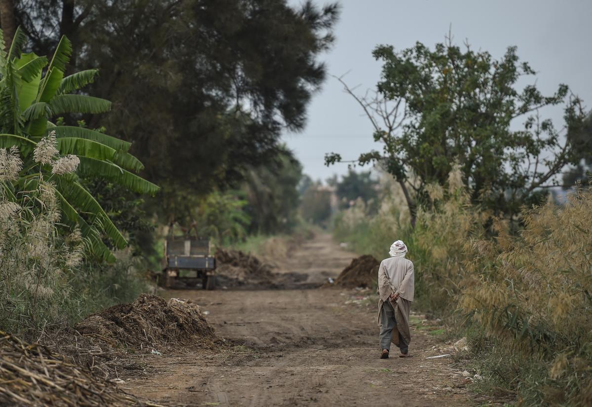 النشاط في القرى أكبر