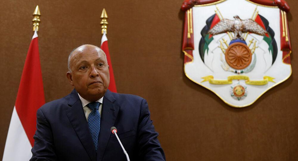 مصر لفرنسا: نرفض التدخل في شؤوننا الخاصة