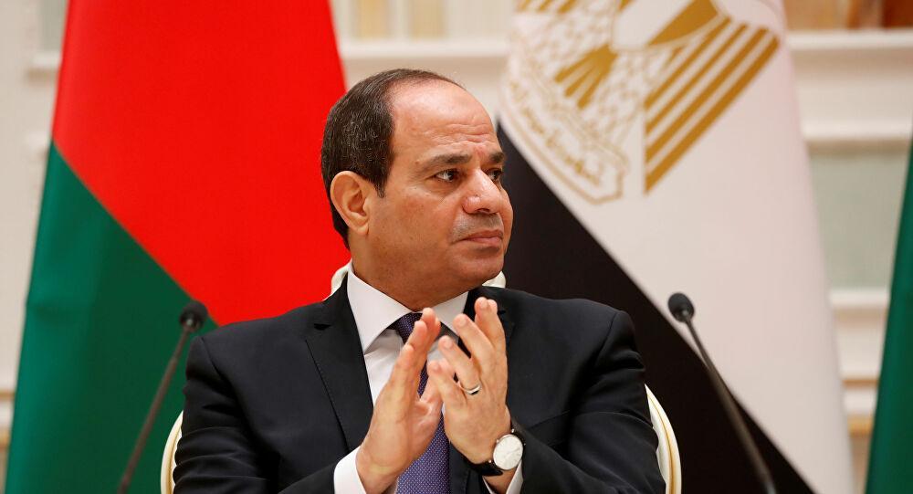 سفيرة إسرائيل لدى القاهرة تهنئ السيسي بعيد ميلاده... ماذا قالت؟