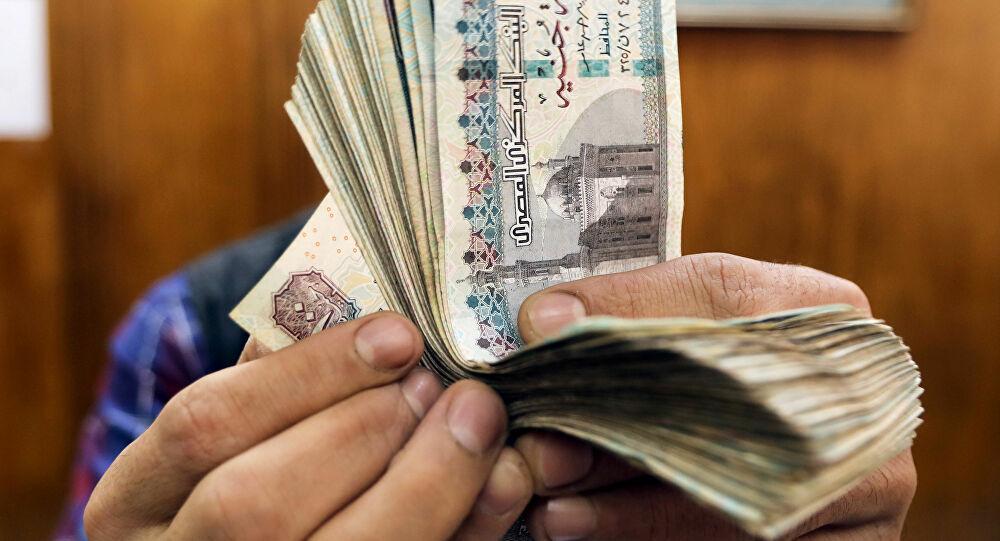 مصر... الكشف عن ضوابط وشروط تطبيق