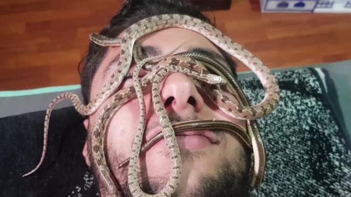 تدليك بالثعابين في مصر... فوبيا يليها هرمون السعادة