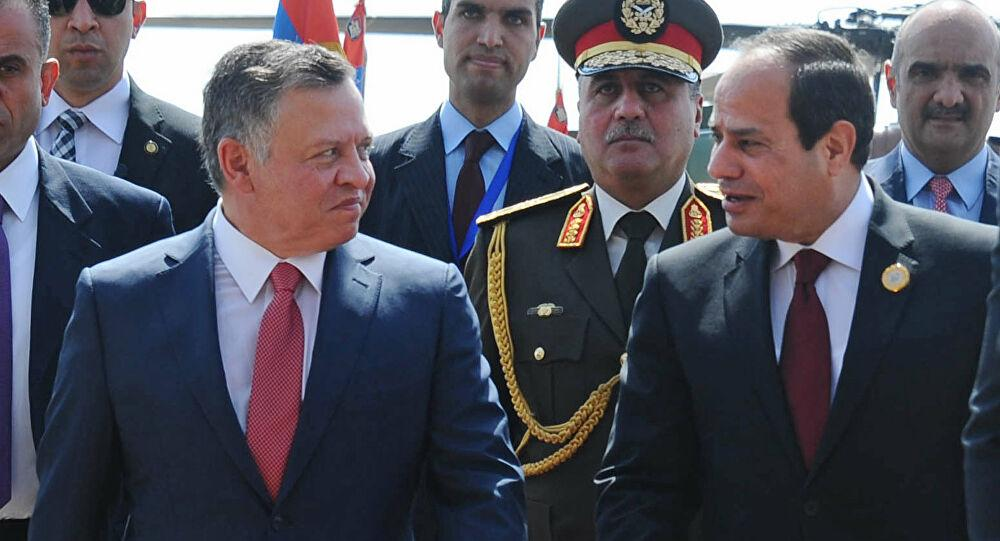 بتوجيه من السيسي... طائرة عسكرية تتجه إلى الأردن... فيديو