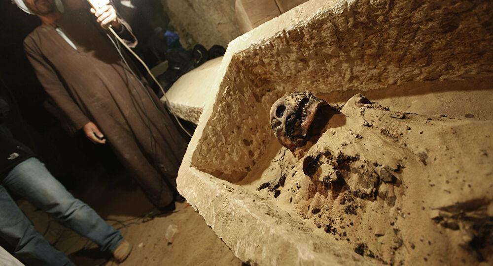 باحثة مصرية تحل لغز
