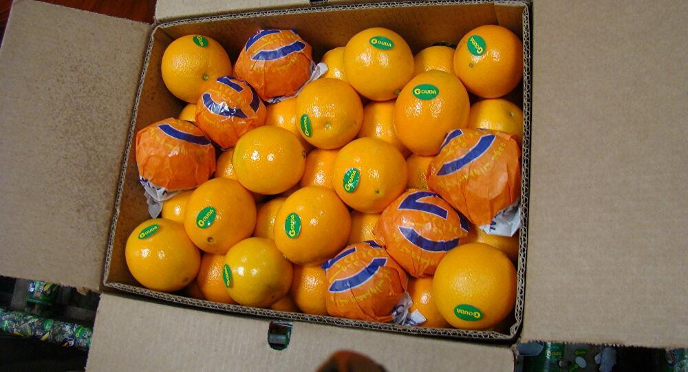 مصري يصدر البرتقال لـ 57 دولة
