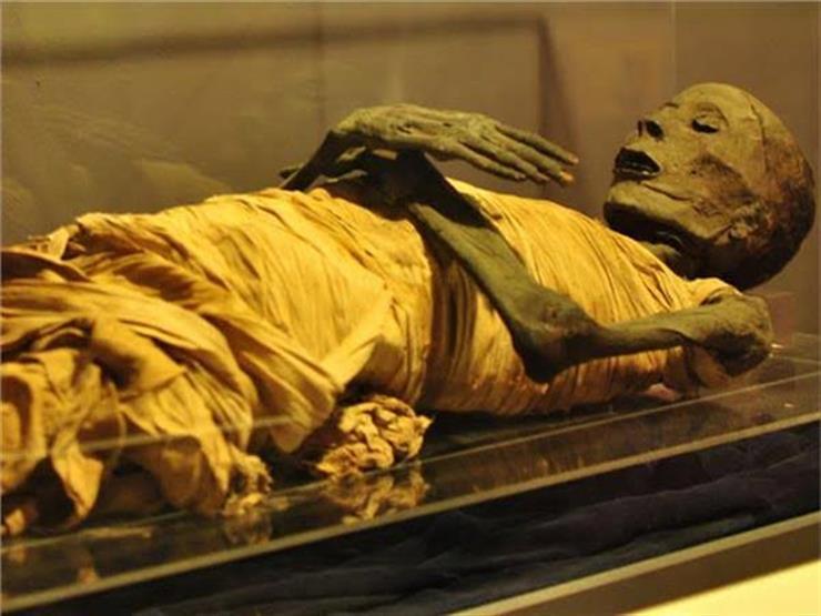 قبل موكب المومياوات الملكية.. تعرف على الملك سقنن رع وابنته الملكة أحمس نفرتاري
