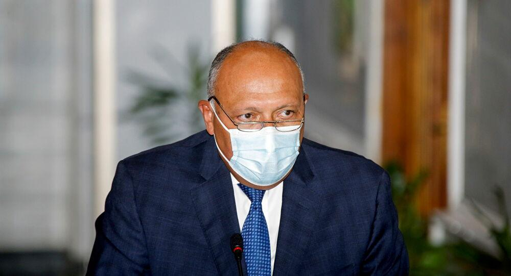 شكري يؤكد استمرار مصر ببذل الجهود لخروج لبنان من الأزمة