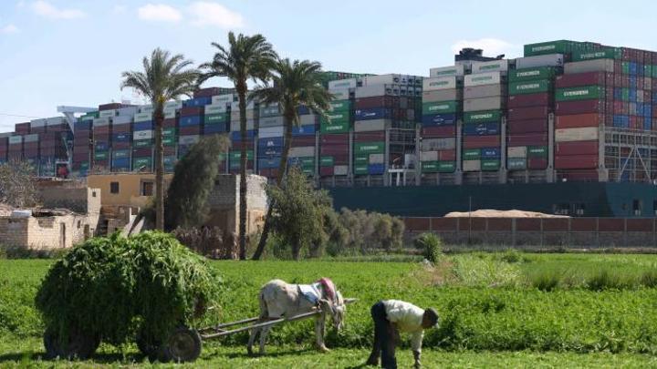 تسهيل سعودي لاستيراد المنتجات الزراعية المصرية