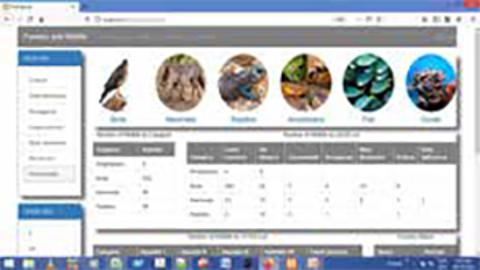 Fauna and Flora Data base under development