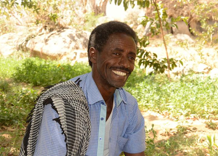 'Hard Work is What We Need and I Trust that Most Eritrean Farmers have that Quality,' Farmer Mahder Mantay
