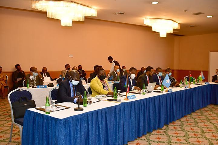 DLCO-EA: 2020-2021 Regular Session in Eritrea