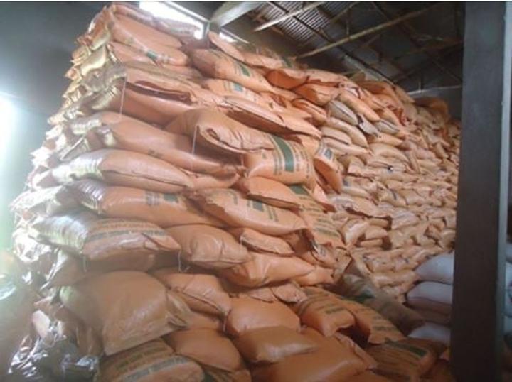 Corporation Distributing Over 12 Million Quintals of Fertilizer