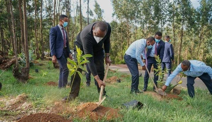 Kenyan, Ethiopian Leaders Plant Tree Seedlings