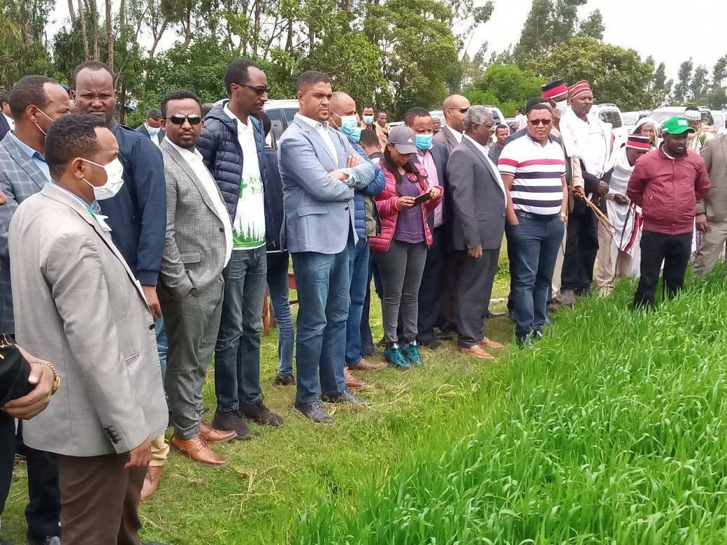 Oromia Chief Administrator Visits Wheat Cluster Farming Activity in Arsi zone