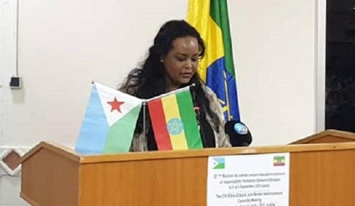 Ethiopia, Djibouti Vow to Curb Illicit Activities Across Border
