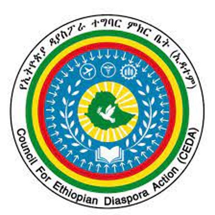 Ethiopian Diaspora to Visit Home Country Beginning New Year