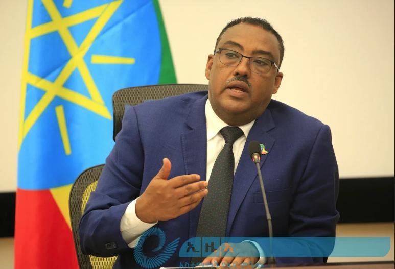 Gov't Strives to Change Diplomacy Landscape of Ethiopia to Ensure National Interest: FM Demeke
