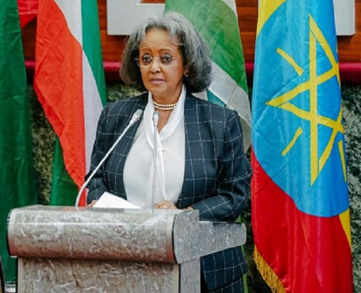 New Ethiopian Gov't to Focus on Peace, Economic Integration of Horn of Africa