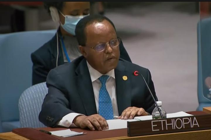 Ethiopia is Not Under Any Legal Obligation to Provide Justifications for Its Decisions: Amb. Taye