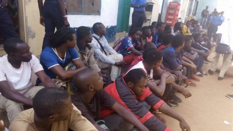 117 suspected criminal arrested
