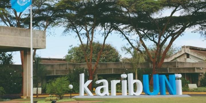 Kenyan Suspended from UN Job After Making Offensive Comment