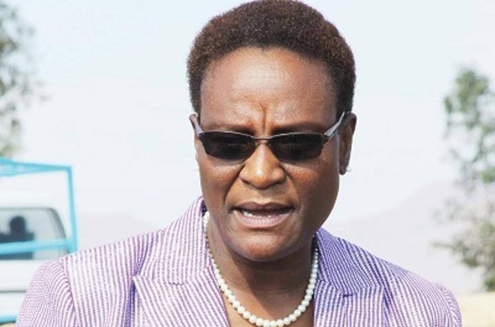 Lesotho launches country profile