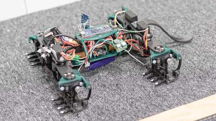 Robotic lizards could be the future of disaster surveillance, say researchers