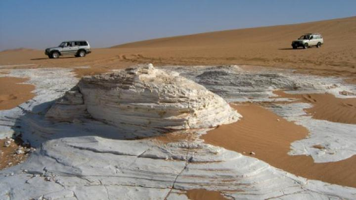 هل عُثر على ديناصور في ليبيا؟
