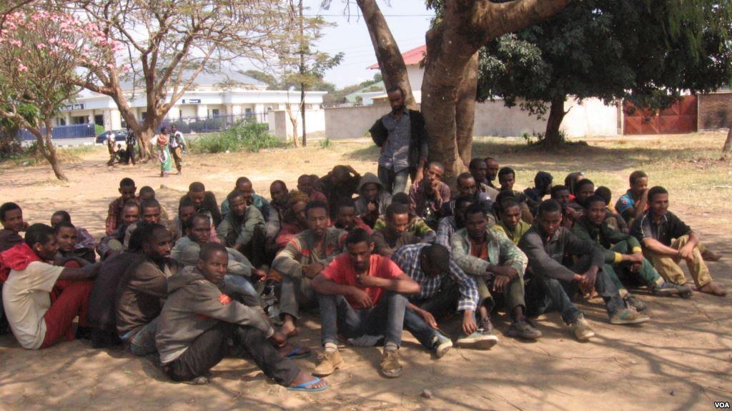 Gov't plan to relocate refugees to Karonga on track