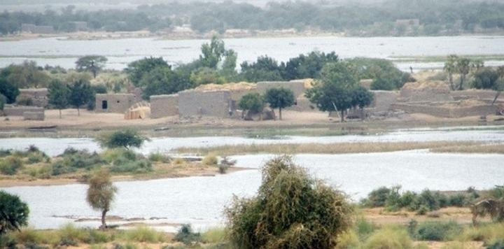 Environnement : face à la dégradation croissante, la conservation ne suffit plus. Rapport